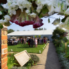 Wedding at Painshill Park Walled Garden