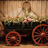 Flowers filled a Wheelbarrow at Barn Wedding