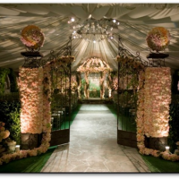 In Search Of… A Wedding Venue