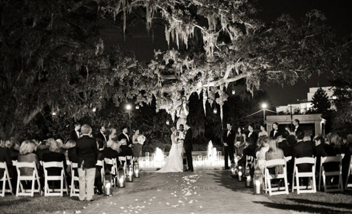 Beautiful Nigh time wedding in the garden under a tree